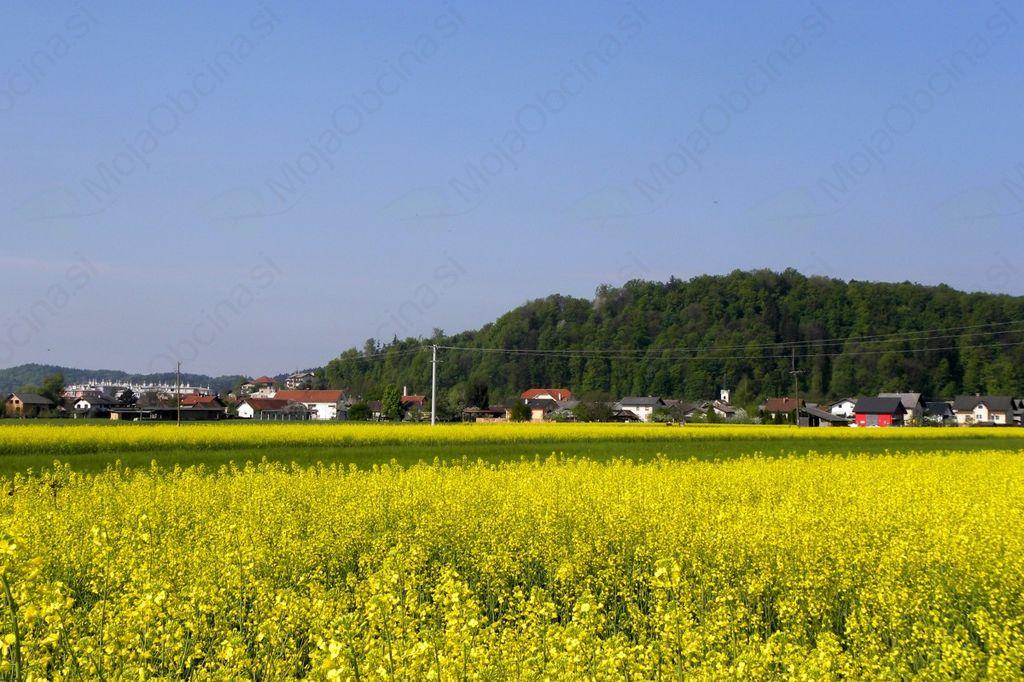 Obvestilo o odvozu kosovnih in nevarnih odpadkov - Jesen 2018