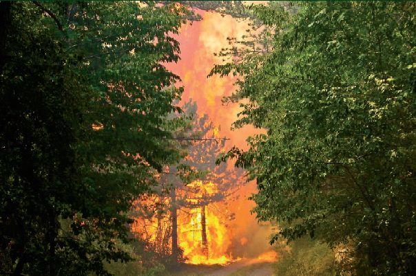 Razglas velike požarne ogroženosti naravnega okolja